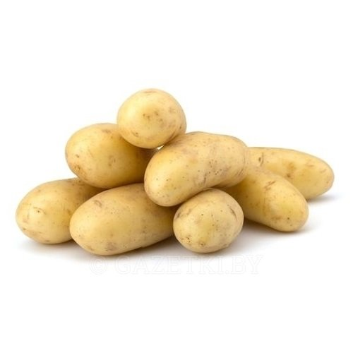 Картофель белый свежий урожай вес. 1 кг.