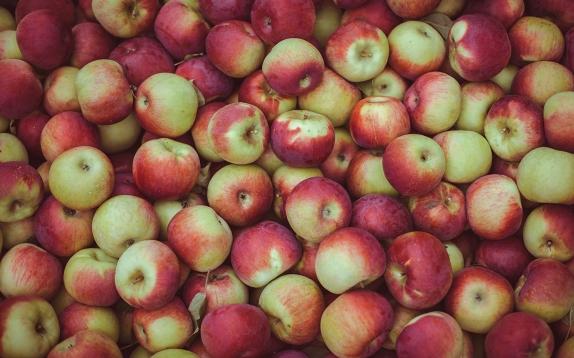 Яблочки (ранетка) Ташкент свежий урожай вес.