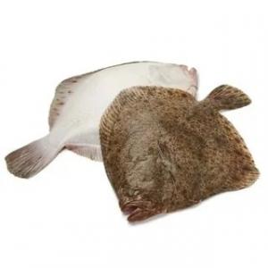 Камбала с/г белое брюшко свежемороженая вес